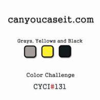 cyci131-color-challenge-300x300